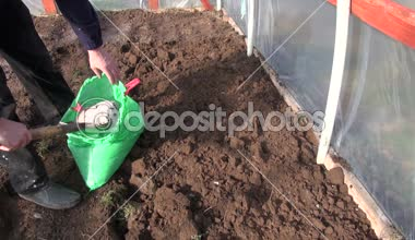 Gardener fertilize soil in greenhouse  with natural wood ashes — Stock Video