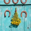 Five  rusty horseshoe on wall and medical st Johns wort flowers — Stock Photo #68454663