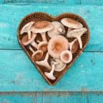 Edible mushrooms fungi in heart form wicker basket — Stock Photo #73822909