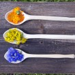 Medical herbs flowers in new wooden spoons — Stock Photo #75731759