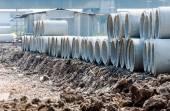 Concrete pipe piles — Stock Photo