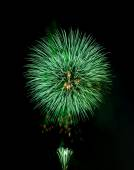 Green firework — Stock Photo