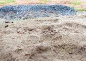 砂と石 — ストック写真