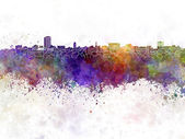 Ann Arbor skyline in watercolor background — Stock Photo