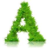 Conceptual set  of green grass — Stock Photo