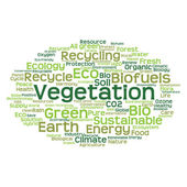 Conservation word cloud — Stock Photo