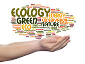 Ecology, conservation word cloud — Stock Photo