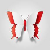 White paper butterfly — Stock Photo