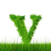 Carattere di erba verde — Foto Stock