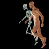 Human for anatomy  design — Stock Photo