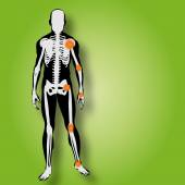 Man anatomy with pain — Fotografia Stock