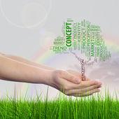 Tree media word cloud — Stock Photo