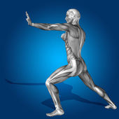 Stong man 3D anatomy body with muscle — Stock Photo