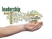 Leadership and marketing word cloud — Stock fotografie