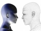 Wireframe human male and  female heads — Stock Photo