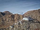Lekir Buddhist monastery in the Himalayas, northern India — Stock Photo