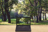 Laptop on a table against a blurred background forest — Stock Photo