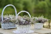 Bouquets of flowers in baskets — Stock Photo