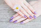 Beautiful purple manicure. Closeup — Stock Photo