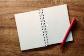 Open square ruled notebook and pen — Stock Photo