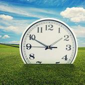Clock in the green grass over blue sky — Zdjęcie stockowe