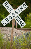 Old Road Rail Crossing — Stock Photo