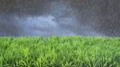 Spring Summer Lawncare Rain — Stock Photo