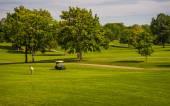 Summer on Golf Course — Stock Photo