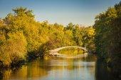 Walk Bridge Over Creek — Stock Photo
