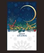 Christmas card with snowflakes in the night sky, pine branches — Stockvektor