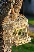 Ptačí klec — Stock fotografie
