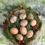Easter Egg Wreath — Stock Photo #70433671