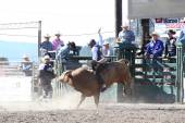 Ty Pozzobon Invitational Pbr — Stockfoto