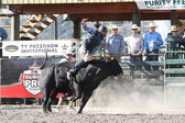 Ty Pozzobon Pbr Invitational — Photo