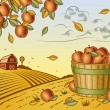 Apple harvest landscape — Vector de stock  #61651287