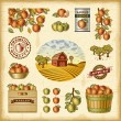 Vintage colorful apple harvest set — Cтоковый вектор #61651337