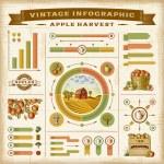 Apple dell'annata vendemmia insieme di infographic — Vettoriale Stock  #78455872
