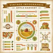 Vintage apple harvest infographic set — Stock Vector