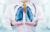 Doctor vith lungs in hands in a hospital — Stockfoto