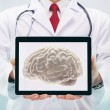 Doctor with stethoscope in a hospital. Brain on the tablet . — Stock Photo #72042043