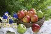 Apples. Daisies. Сornflowers. Shopping. Still life. — Stock Photo