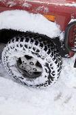 Bil, snö — Stockfoto