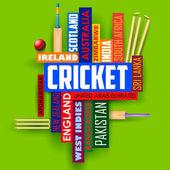Cricket typography background — Stockvektor