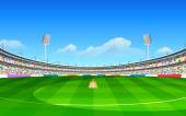 Stadium of cricket — ストックベクタ