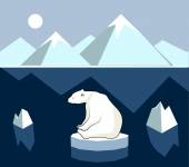 Polar bear on an ice floe, polar landscape. — Stock Vector