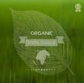 Eco label of Organic Standart. Concept. Environmental protectio — Stock Vector