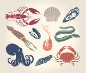 Vintage illustration of crustaceans, seashells and cephalopods — Stock Vector