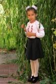 Girl in the national Ukrainian costum — Stock Photo