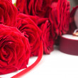 Close up of red roses — Foto de Stock   #63344905