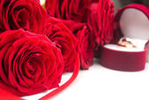 Close up of red roses — Stock Photo